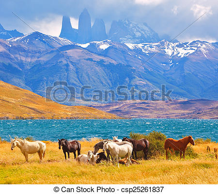 Stock Photos of Beautiful cliffs Torres del Paine.