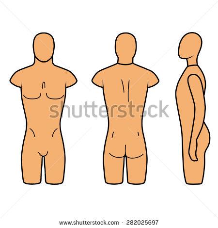 Male torso clipart.