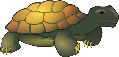 tortoise clipart images #16