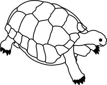 Tortoise clipart black and white 5 » Clipart Station.