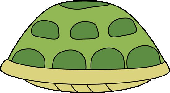 Tortoise Shell Images.