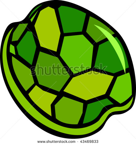 Turtle Tortoise Shell Turtle Shell Stock Vector 203529076.