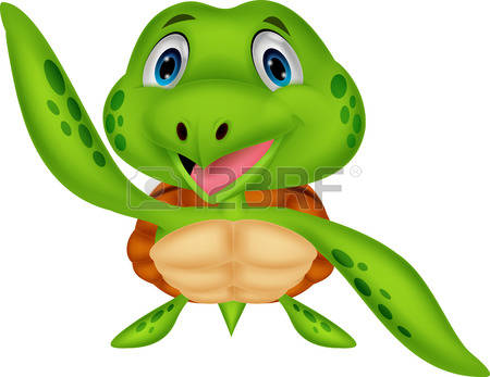 2,825 Tortoise Shell Stock Vector Illustration And Royalty Free.