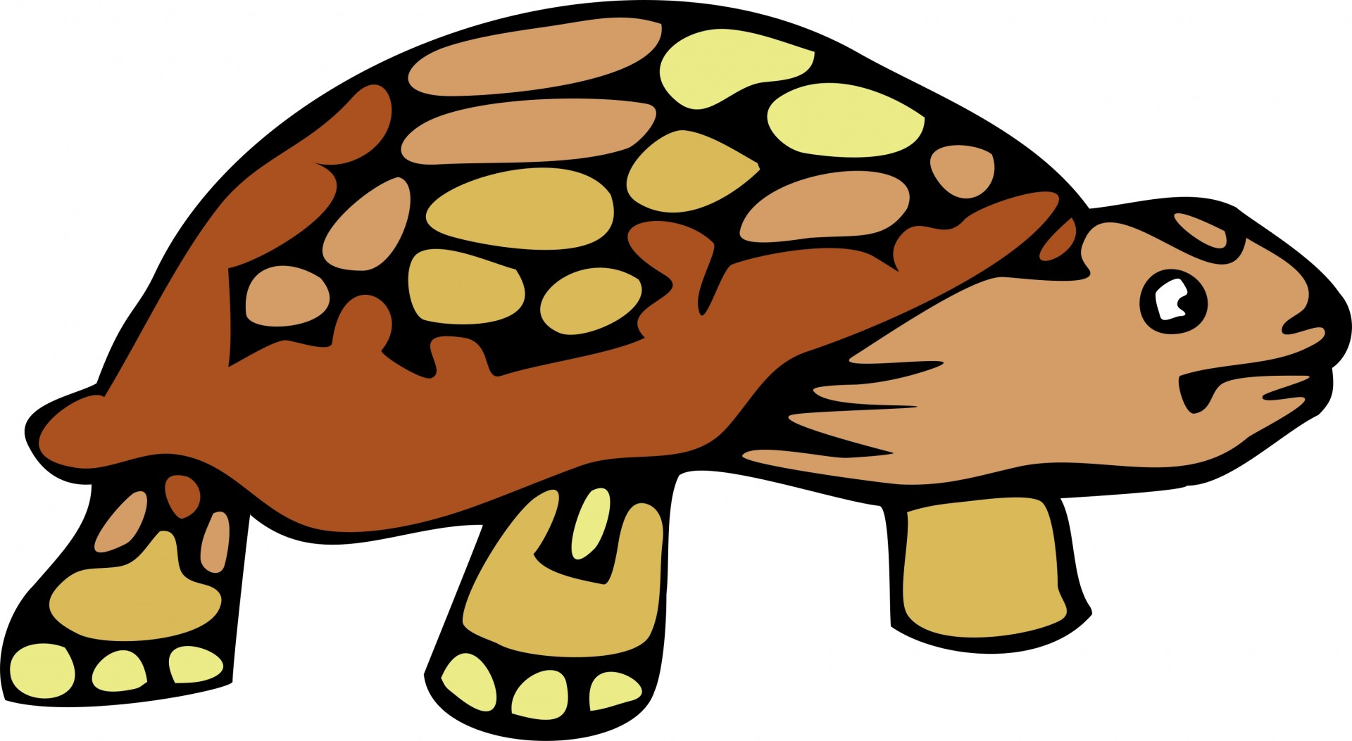 Clipart of tortoise.