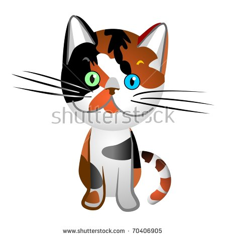 Tortoiseshell Cat Stock Photos, Royalty.
