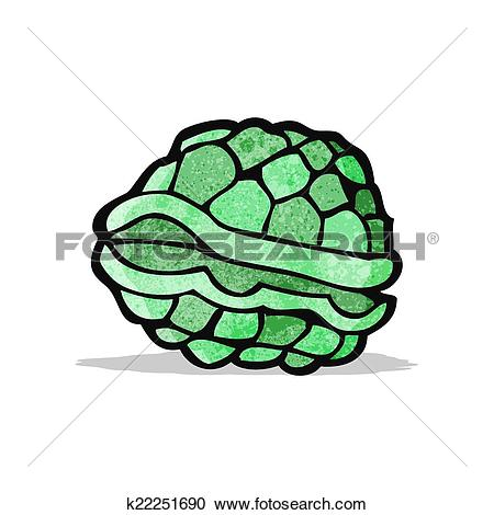 Clipart of cartoon tortoise shell k22251690.