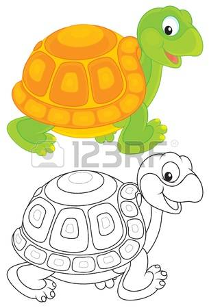2,694 Tortoise Shell Stock Vector Illustration And Royalty Free.