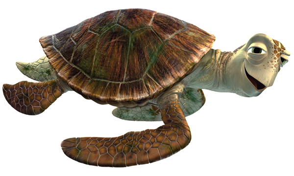 Tortugas png » PNG Image.