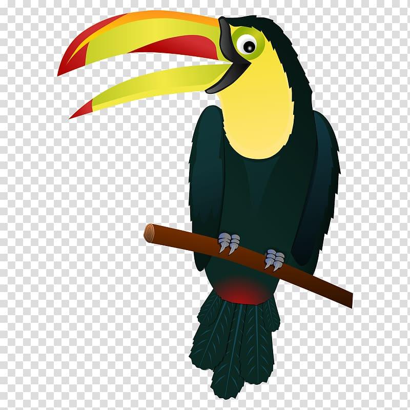 Bird Keel.