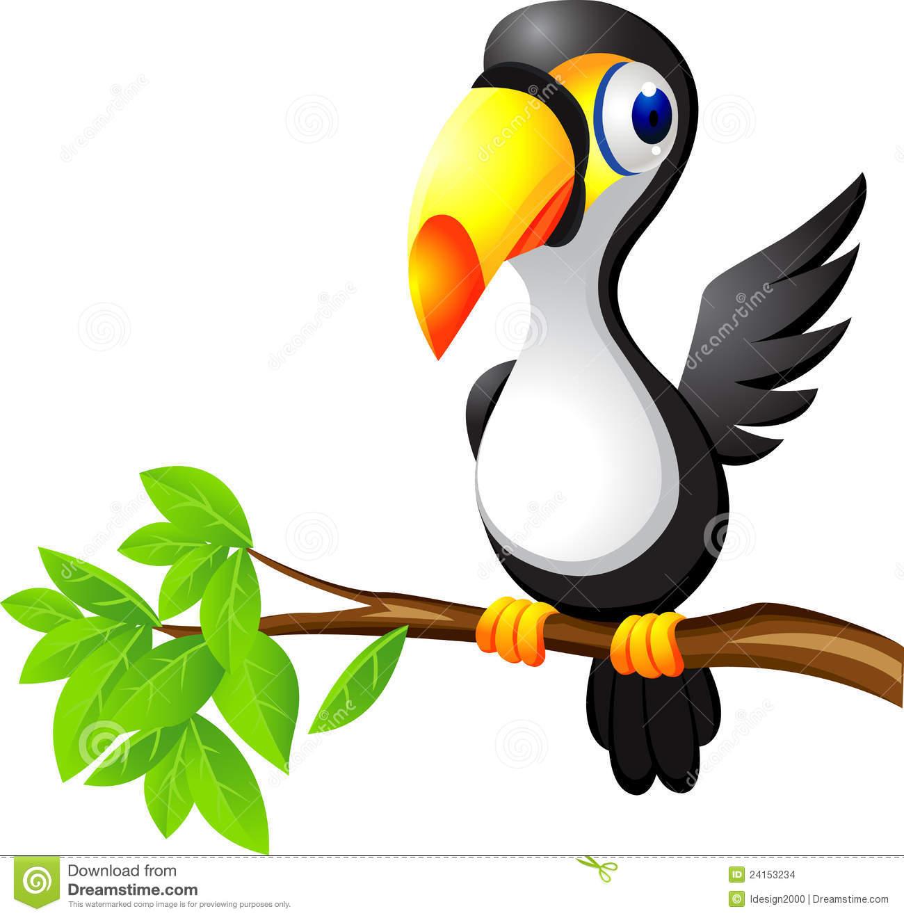Clipart toucan bird.
