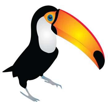 Toucan Clipart.
