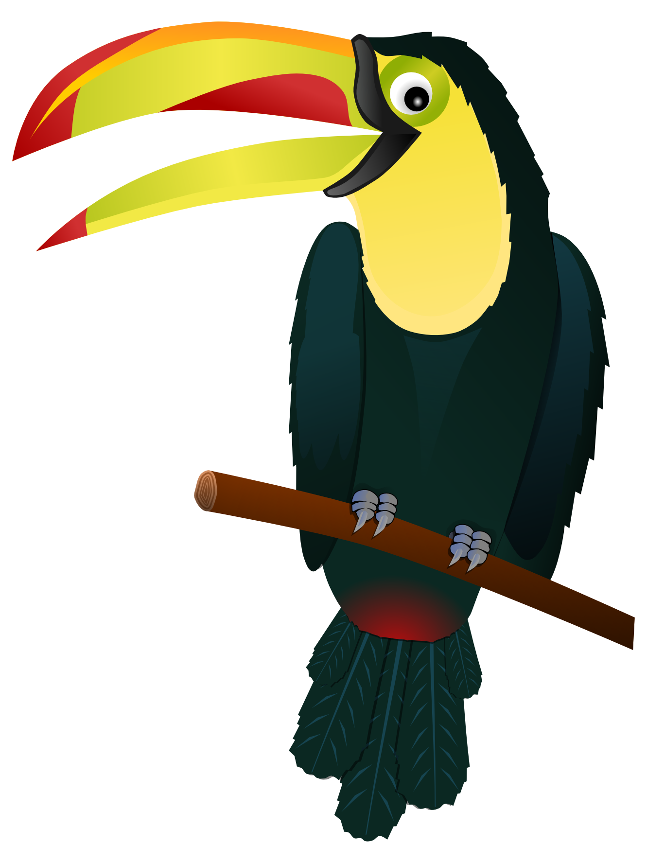 Best Toucan Clipart #19600.