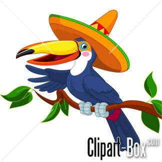 1000+ images about Toucan on Pinterest.