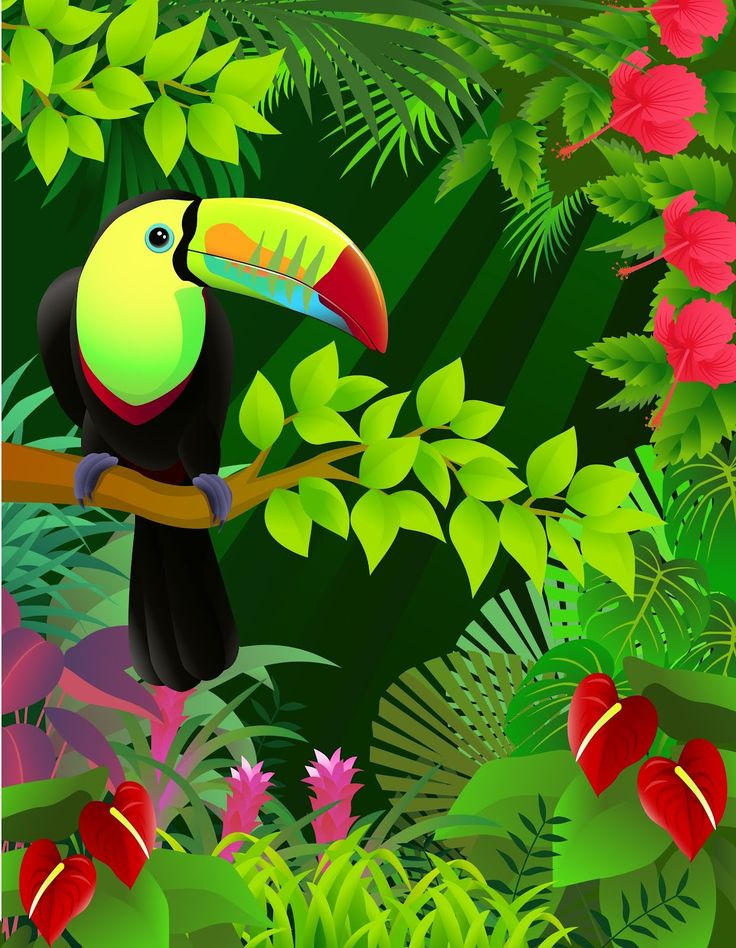 1000+ images about Tropical.