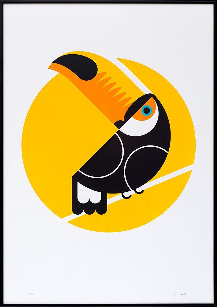 1000+ images about BIRDS PARROT TOUCAN on Pinterest.