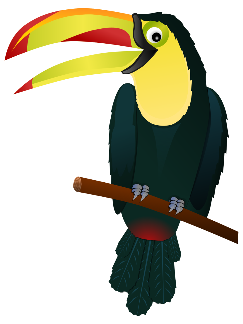 Best Toucan Clipart #19681.