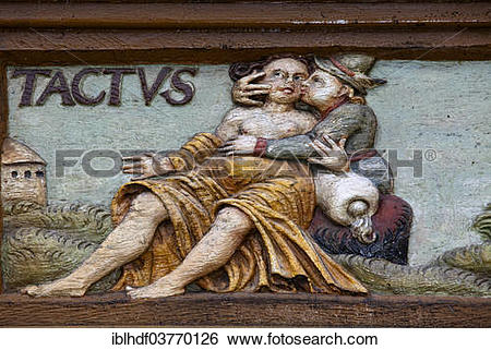 """Stock Images of """"Tactus, Latin for the sense of touch, wood."""