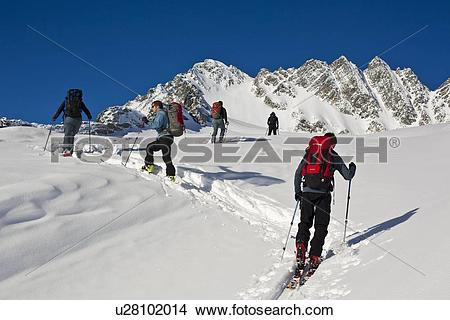 Stock Photo of A group of ski tourers at Roger's Pass heading.