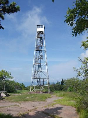 Fire Tower Project — Catskill Center.