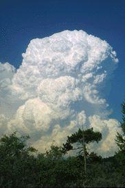 cumulonimbus clouds.