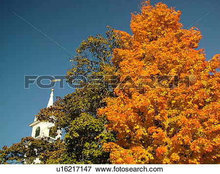 Picture of Townsend, MA, Massachusetts, Autumn, colorful fall.