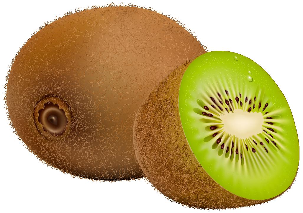 Kiwi Fruit PNG Clipart.