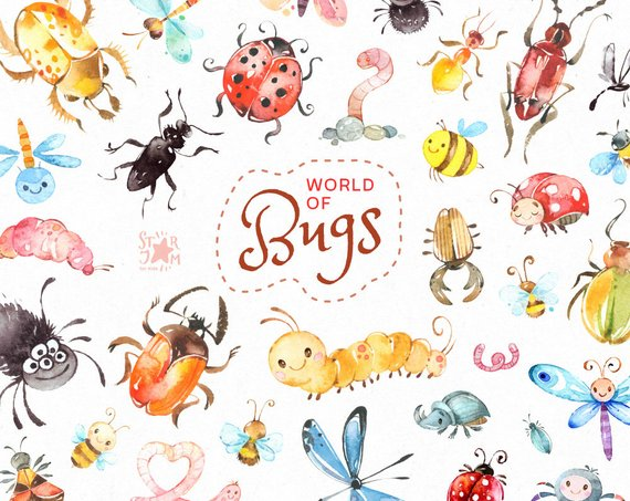World of Bugs. Watercolor clipart, forest, insects, wild.