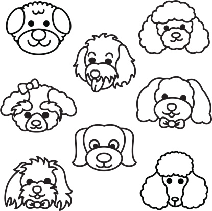 Showing post & media for Toy poodle cartoon.