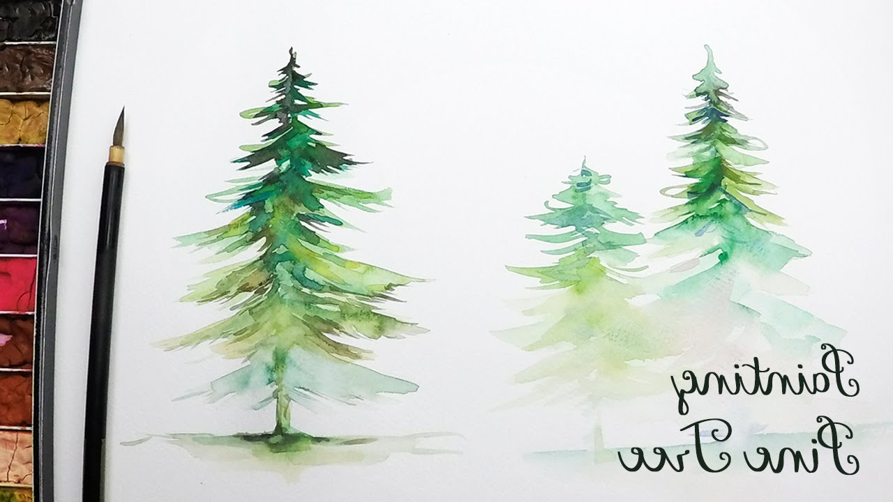 The best free Pine tree watercolor images. Download from.