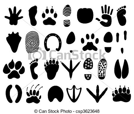 Traces Illustrations and Clip Art. 23,454 Traces royalty free.