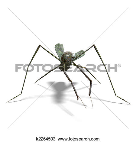 Drawing of praying mantis k2264503.