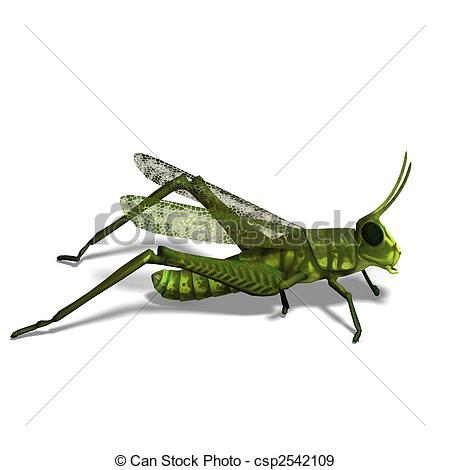 Stock Illustration of green grasshopper.
