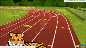 A Beautiful Tiger Lying Down and Outdoor Running Track Background.