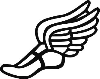 Track Shoe With Wings.