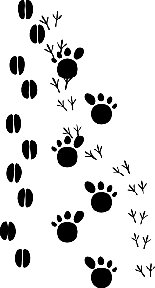 Deer Tracks Clipart.