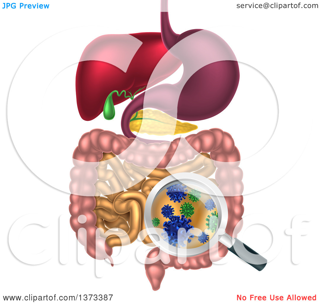 Clipart of a 3d Magnifying Glass Zoomed in on Bacteria, Gut Flora.