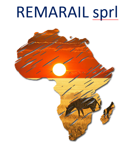 RemaCoil « Your specialist in DC Traction Motors and components.