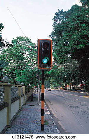 Pictures of plant, Traffic lights, Cityscape, Road, street, plants.