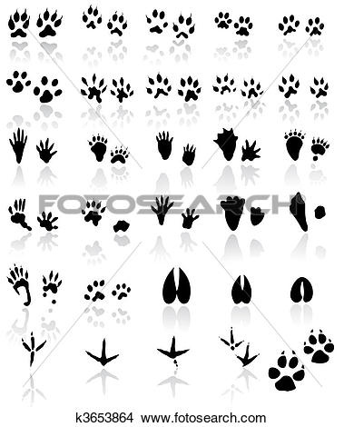 Clipart of Collection of animal and bird trail k3653864.