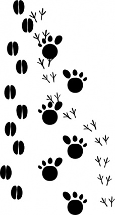 Animal foot clipart.