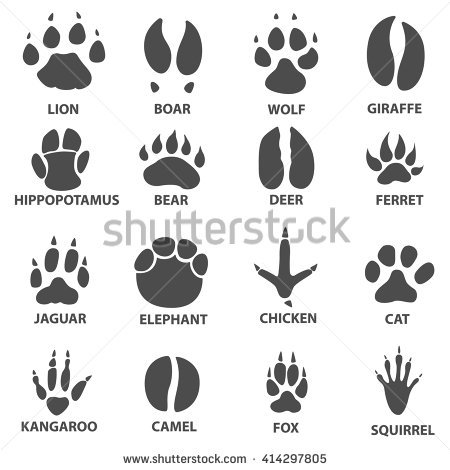 Gopher paw print clipart.