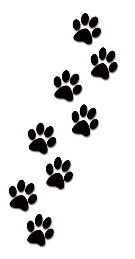 Animal trail clipart.