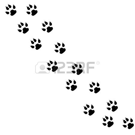 445 Paw Trail Stock Vector Illustration And Royalty Free Paw Trail.