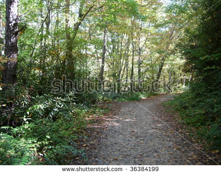 Hike And Bike Trail Stock Photos, Royalty.
