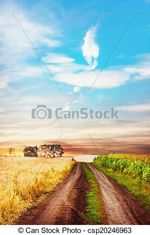 Stock Image of Tranquil rural scene with road between two fields.