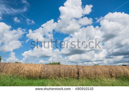 Hay Rounds Stock Photos, Royalty.