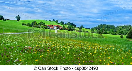 Stock Photography of Alps mountain meadow tranquil summer view.
