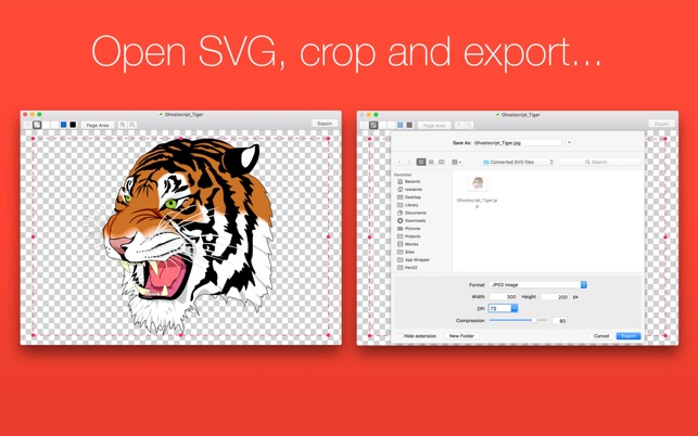 SVG Converter.