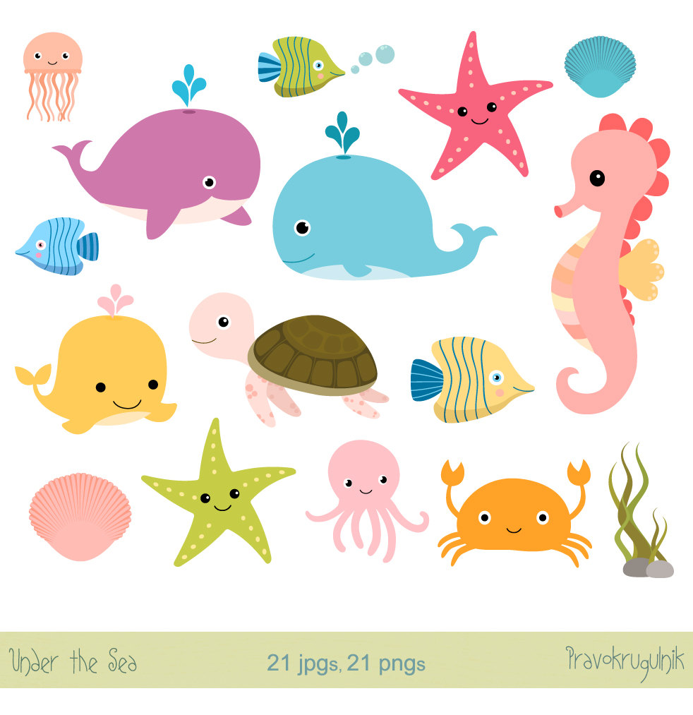 Jellyfish clipart.