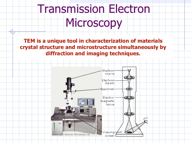 Transmission Electron Microscope.